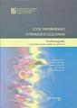 Učiteľ preprimárneho a primárneho vzdelávania. Profesiografia v slovensko-česko-poľskom výskume